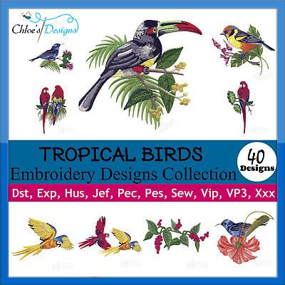 Tropical Birds Collection Machine Embroidery Designs On Cd Or Usb Pes Jef Hus