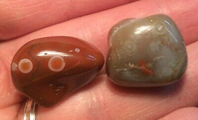 2 nice Lake Superior EYE Agates brown with 2 eyes & gray with a few eyes 0.8 oz.