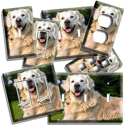Gorgeous Adult Golden Retriever Dog Light Switch Outlet Wall Plate Room Hd Decor