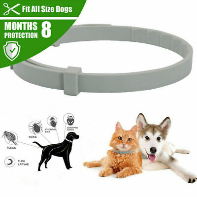 Anti Insect Flea and Tick Collar 8 Month Protection Adjustable For Pet Dog Cat