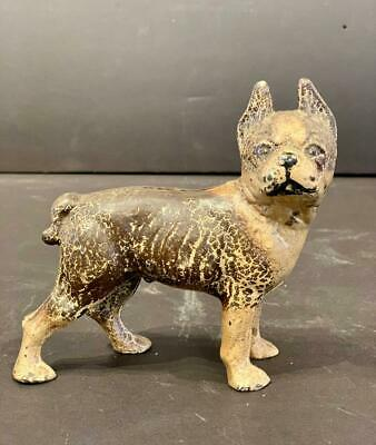 Cast Iron Bulldog Bank in Superb Color, Early 20thC