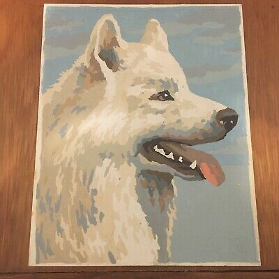 Vintage Completed 8X10 1960's Paint By Number ~ White Wolf ~ Very Nice Picture