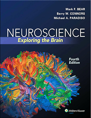 🔥 Neuroscience Exploring the Brain 4th Edition by Mark F. Bear 🔥