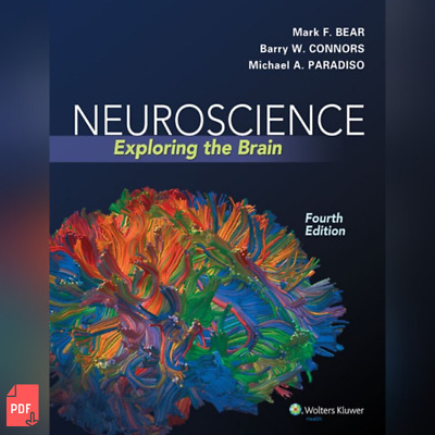 Neuroscience Exploring the Brain 4th Edition by Mark F. Bear - PDF ONLY