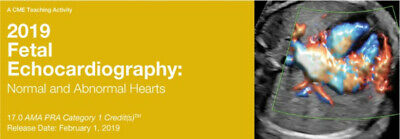 2019 Fetal Echocardiography: Normal and Abnormal Hearts