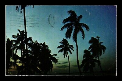 Dr Jim Stamps Us Palm Trees Sunrise Florida Seacoast Postcard 1971