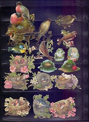 Nice Packet of Original Victorian Die Cut Scraps Birds & nests    (RB9)