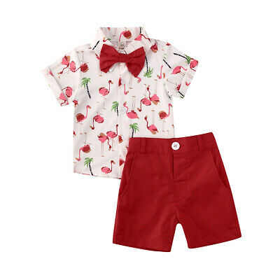 Toddler Kids Baby Boy Summer Flamingo Clothes Shirt Tops Shorts Outfits Set