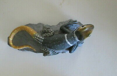 Rock Gecko Lizard on Rock  Land & Sea Collectibles