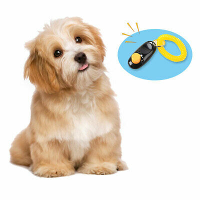 Dog Pet Training Aid Trainer Teaching Tool Dogs Puppy Pets Animals UK NEW HOT .L