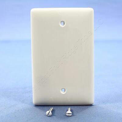 Hubbell White Commercial Unbreakable Mid-Size Nylon Blank Wallplate Cover NPJ13W