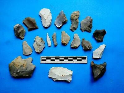 Flint Group of Tools;Mesolithic /Neolithic  (V)-Dorset Found  -Look!