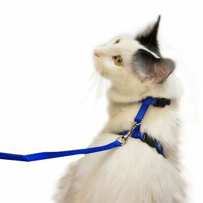 Juvale Adjustable Nylon Pet Harness Collar and Leash for Cats Dogs, Navy Blue