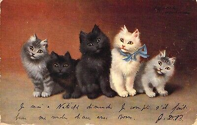 c. 1907, Five Cats, A White, Two Grey  and Two Black, Old Post Card