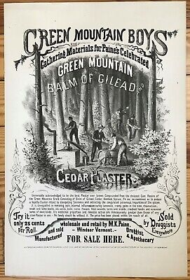 """Antique Vermont Poster Advertisement, """"Green Mountain Balm of Gilead"""" ca 1868"""