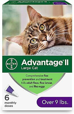 Bayer Advantage II Flea prevention for Large Cats,Over 9 lbs,6 Pack