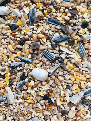 Wild Bird Food,seed mix Premium no mess with sunflower, robin, songbird