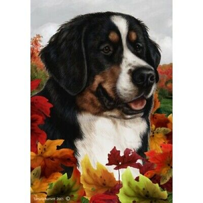 Fall House Flag - Bernese Mountain Dog 13051