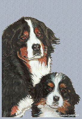 Pipsqueak House Flag - Bernese Mountain Dog Pair 49559