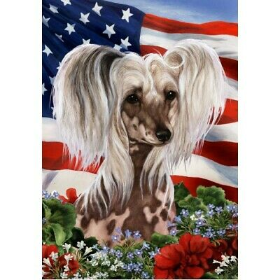 Patriotic (1) House Flag - Chinese Crested 16069