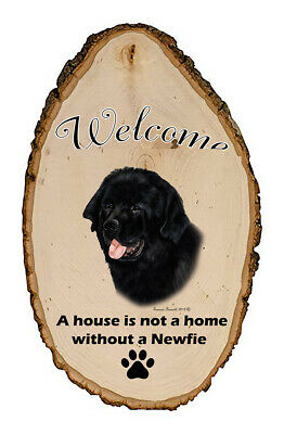 Outdoor Welcome Sign (TB) - Newfoundland 51079