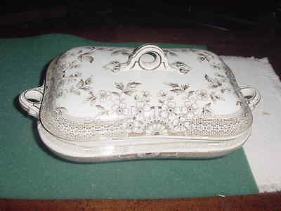 Antique Foley A. F. and Co. Covered Vegetable Bowl Aesthetic Staffordshire,