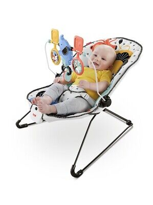 New Fisher-Price Deluxe Bouncer: Signature Style
