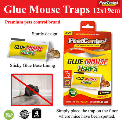 4 Pcs Sticky Mouse Rat Snake Mice Bugs Trap Catcher Board Kitchen
