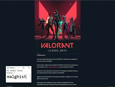Valorant Closed Beta Account EUW fast delivery(from 5 to 30 min)