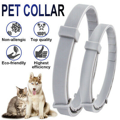 2PCS Adjustable Pet Anti Flea Tick Neck Collar for Dog Cat Kitten Protection