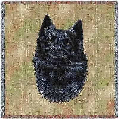 Lap Square Blanket - Schipperke by Robert May 3378 IN STOCK