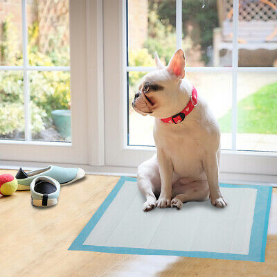 400 Pieces Dog Puppy Pet Housebreaking Pad Pee Training Pads Underpads