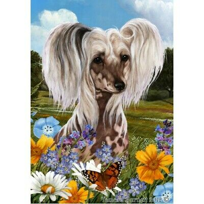 Summer House Flag - Chinese Crested 18069
