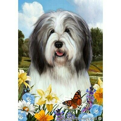 Summer House Flag - Blue and White Bearded Collie 18170