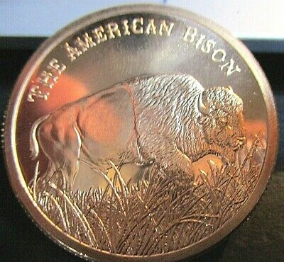 We the People  1 oz Copper Bullion Round Coins Enduring Freedom