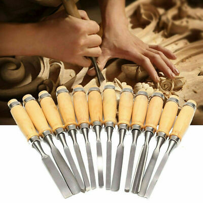 Wood Carving Hand Chisel Tools 12 Piece Set Woodworking Professional Gouges New