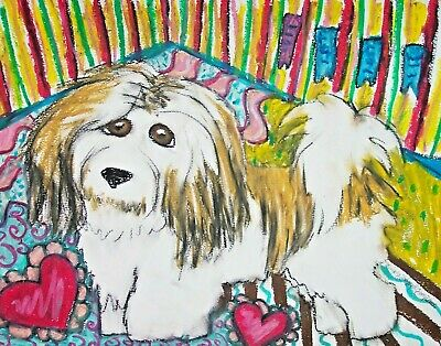 Havanese Style Star Dog Art Print Signed by Artist Kimberly Helgeson Sams 4x6