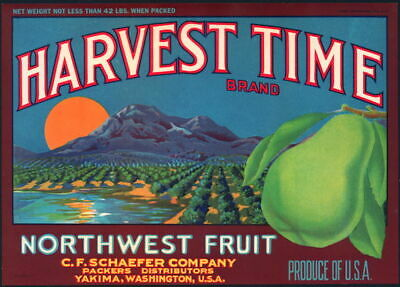 great graphics 1940s BLUSHING MELONS Fruit Crate label Vintage Original Label