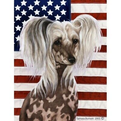 Patriotic (D2) Garden Flag - Chinese Crested 320691