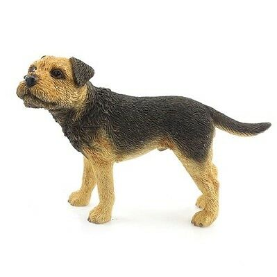 Dog Studies By Leonardo Standing Border Terrier New Gift