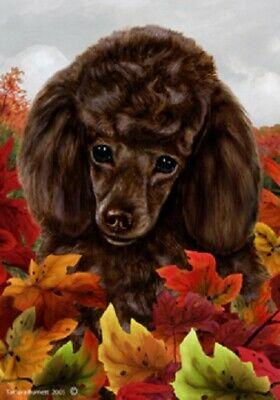 Fall Garden Flag - Chocolate Poodle 132261