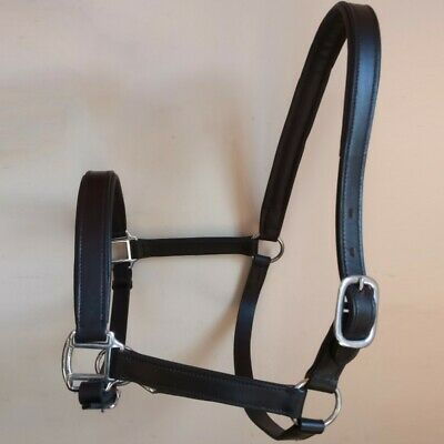LEATHER HEAD COLLAR FULLY RAISED /& PADDED COB AND PONY SIZE BROWN COLOR FULL
