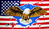 USA EAGLE FLAG America American States Country Western