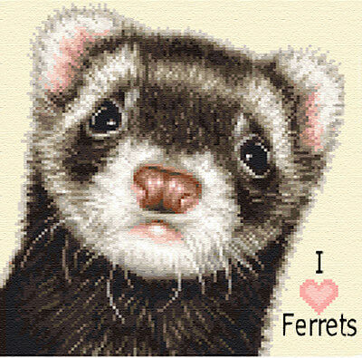 FERRET complete counted cross stitch kit ~ Love ferrets