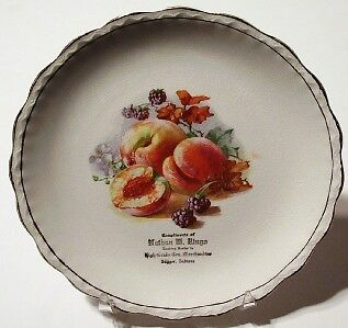 M.&S. Porcelain China Advertising Plate from Dugger IN