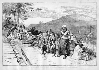 Immigrants Waiting To Be Distributed Into The Coal Regions Of Pennsylvania