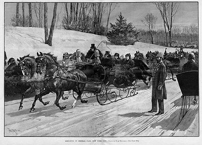 Sleighing In Central Park, New York, Horses, Sleigh