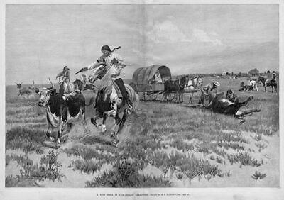 Indian Territory Beef Issue Revolvers Shoot Butcher Cattle Horses Wagon Indians