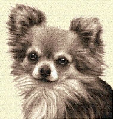 CHIHUAHUA dog complete counted cross stitch kit  **Jann Designs