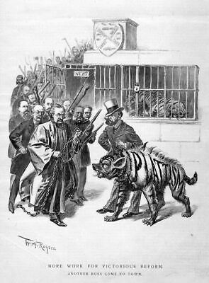 Tiger Caged, Hyena, Victorious Reform, Politics History